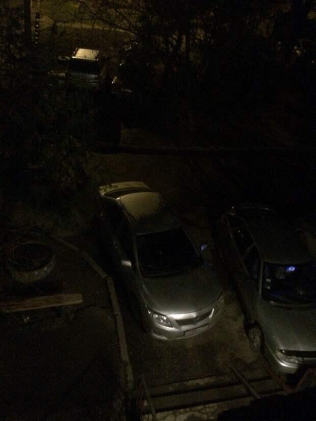 Вот хозяева двора, в голове у них дрова автомир, олени. идиоты, странные люди, хозяева, я паркуюсь как