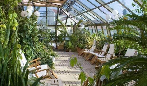Зимний сад – особенности организации сада в частном доме, на балконе, на крыше и в других местах