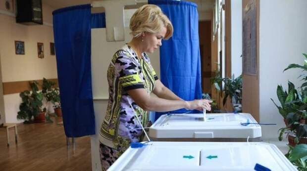 В НОМ объяснили успех самовыдвиженцев на муниципальных выборах 25 апреля