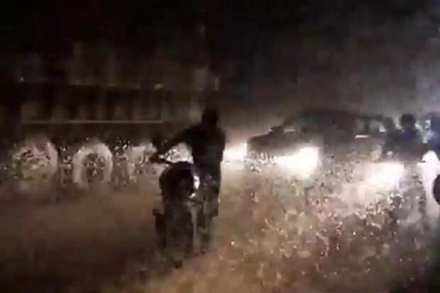 Полчища насекомых устроили пробку на шоссе и попали на видео