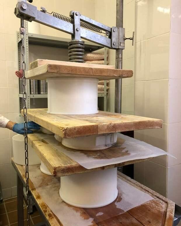 8. Перед фасовкой сыр прессуют, выглядит это, как на картинке: заводы, привычные продукты, производство, ферма