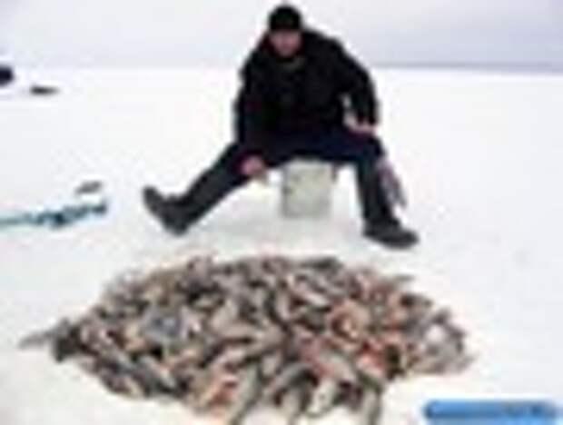 Рыболовный кораблик для завоза прикормки