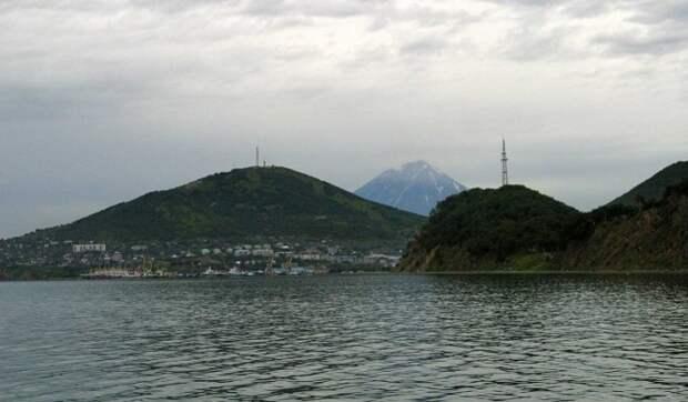 Причиной экологической катастрофы на Камчатке стало природное явление