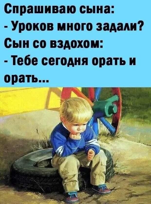 Возможно, это изображение (2 человека и текст «спрашиваю сына: -уроков много задали? сын co вздохом: -тебе сегодня орать и орать...»)