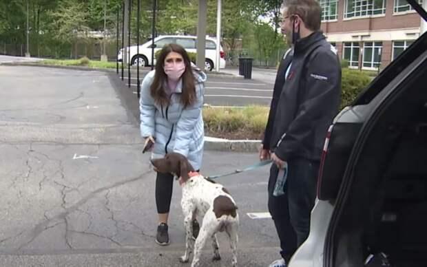 Репортер нашла украденного пса прямо во время съемки сюжета о его похищении