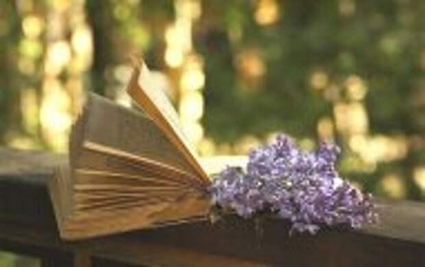 Литература: 10 нетривиальных книг, которые можно прочесть за один вечер