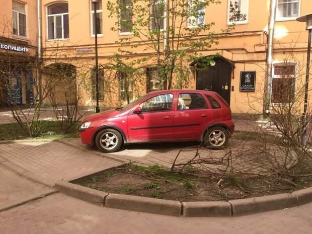 На фига вы на моем парковочном месте кустов насажали? автомир, олени. идиоты, странные люди, хозяева, я паркуюсь как