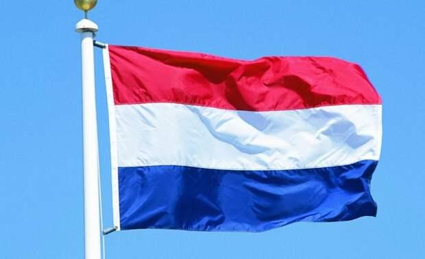 Слушания по делу о крушении MH17 приостановили
