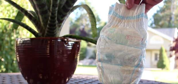 Полезные свойства подгузников для ваших растений