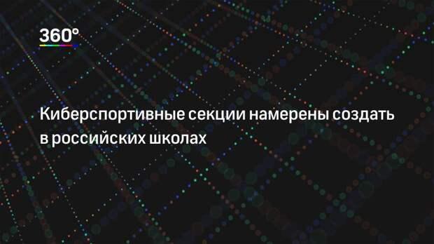 Киберспортивные секции намерены создать в российских школах