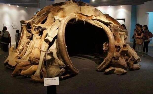 В 1965 году в процессе раскопок в Межириче, Украина, обнаруженно 4 хижины, состоящие из 149 костей мамонта Археология, Наука, Дом, Раскопки, Мамонт, Экспонат, Музей, Археологические раскопки, Находка