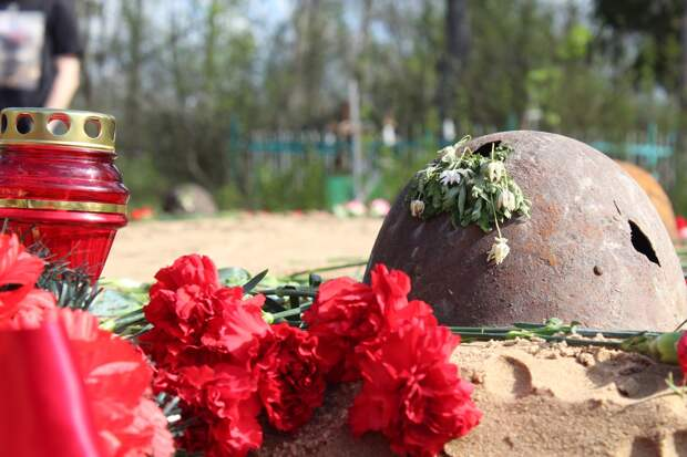 В Ленинградской области нашли останки бойца, призванного на фронт из Сарапула