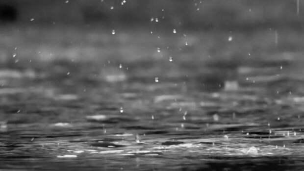 Дожди и грозы. О погоде в Алтайском крае 26 июля