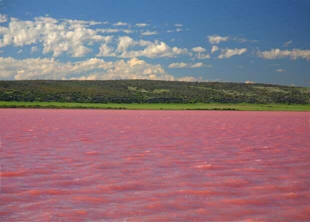 22. Малиновое озеро природа, россия, чудеса