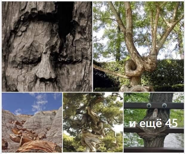Ученые раскрыли тайну карликовых мумий из Египта