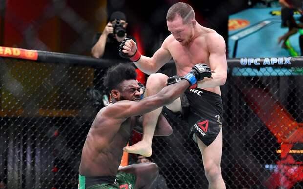 Ян — Стерлингу: «Ты самый мягкий боец в UFC. Не забудь в следующий раз захватить свои яйца в октагон»