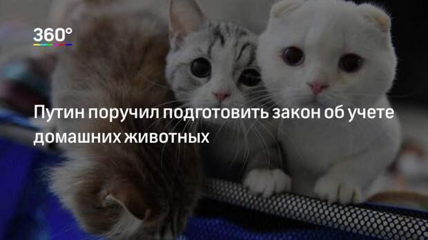 Путин поручил подготовить закон об учете домашних животных