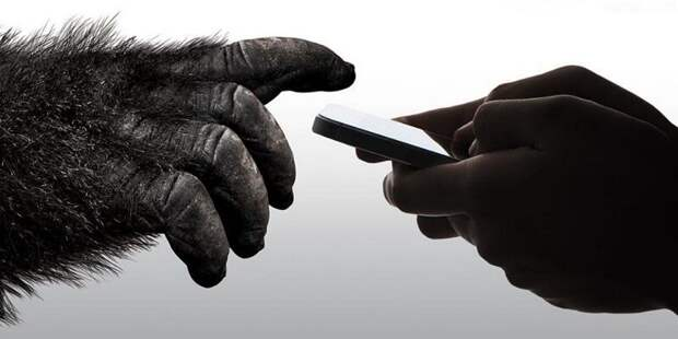 Apple инвестировала $45 млн в Corning. Ждём гибкий iPhone?