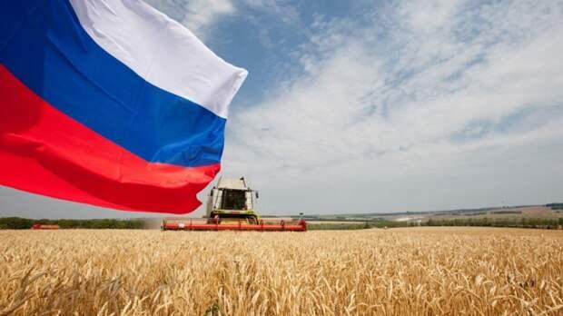 Умопомрачительные результаты сельского хозяйства РФ