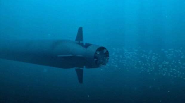 В США испугались ядерных цунами из-за российских «Посейдонов»
