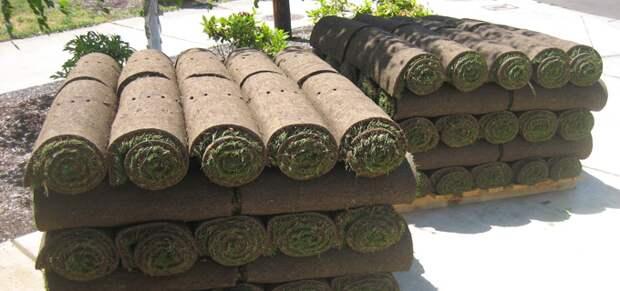 Как самостоятельно организовать доставку рулонного газона