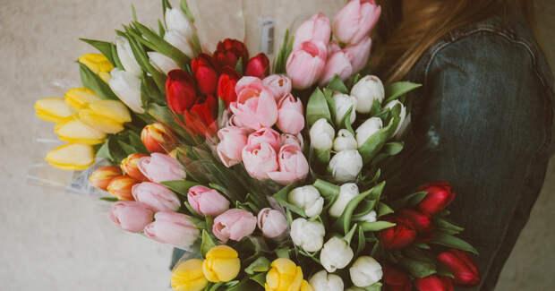 Охапка тюльпанов в руках женщины