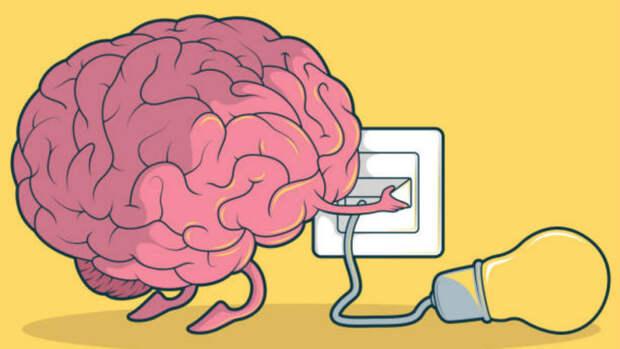 Кто принимает решение - мы или наш мозг? Фитнес для мозга