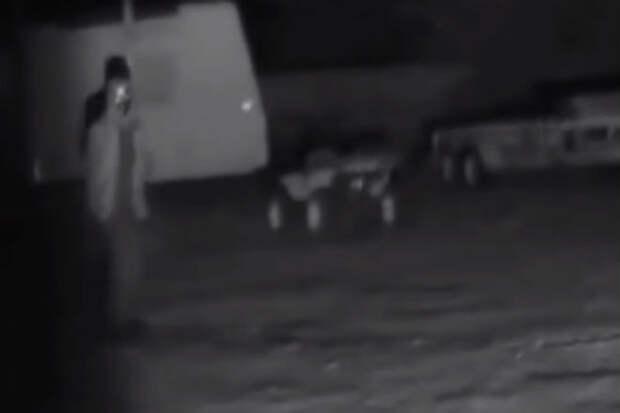 Крики странных животных: ночные записи с камер