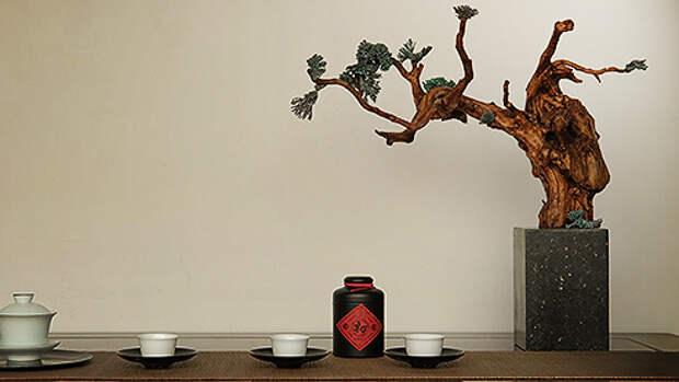 Сто разных вкусов. Путешествие по истории чая