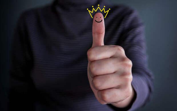 7 лучших материалов года: рейтинг «За рулем»