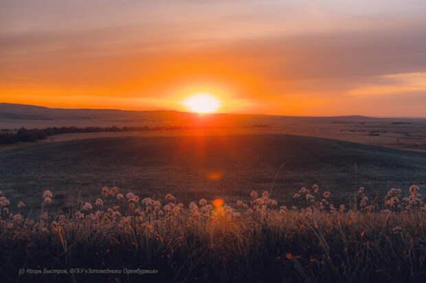 На закате (Андрей Белый)