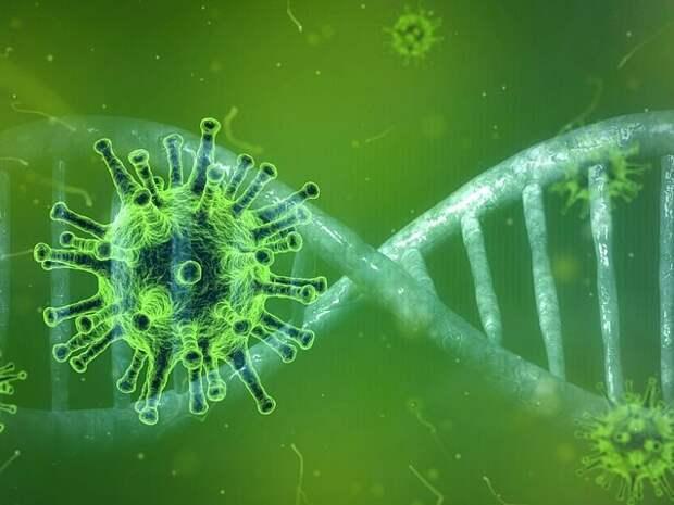 Американские ученые выяснили причину более высокой заразности новых штаммов коронавируса