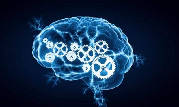 Доброта требует разума: почему добрые люди умнее всех остальных