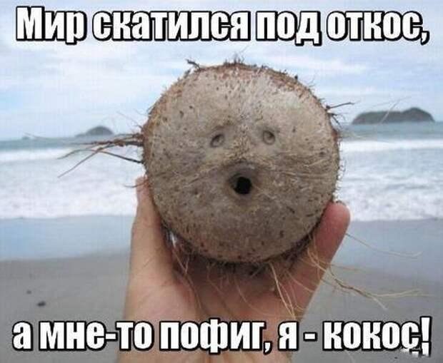 Забавные картинки и фото с надписью для настроения (10 фото)