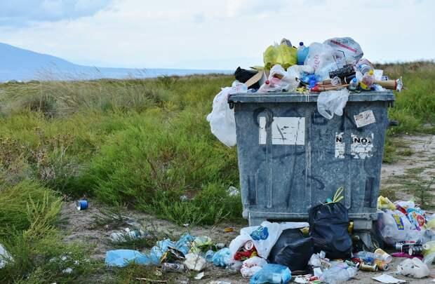 В России в 2021 году появится единая государственная система учета отходов