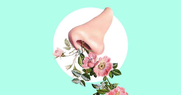 5 болезней, которые можно определить по запаху