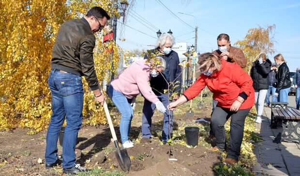 Яблоневый сад у Дома Памяти. Депутаты Оренбургского горсовета участвуют в субботнике