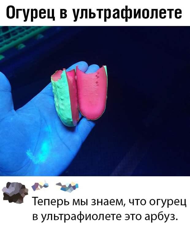 Скриншоты из социальных сетей.  (30 фото)