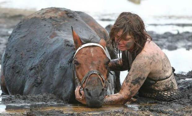 Конь завяз в топи и начал уходить на дно болота. Люди уже опустили руки, но на помощь пришел фермер с трактором