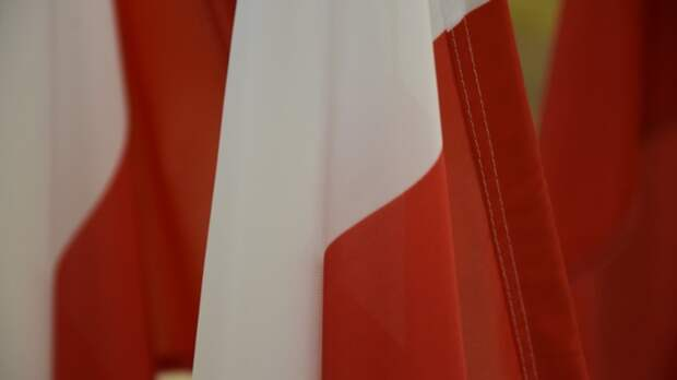 """""""Россия подменила героя, а Краков не надо было спасать от нацистов"""": в Польше озвучили очередную """"историческую правду"""""""