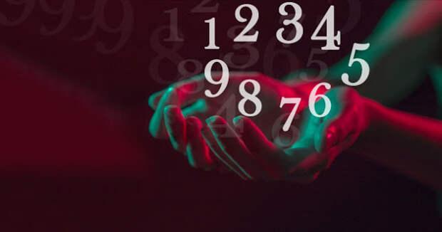 О чем расскажет ваше любимое число