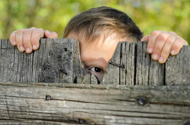 Тонкости филологии: любопытство или любознательность?