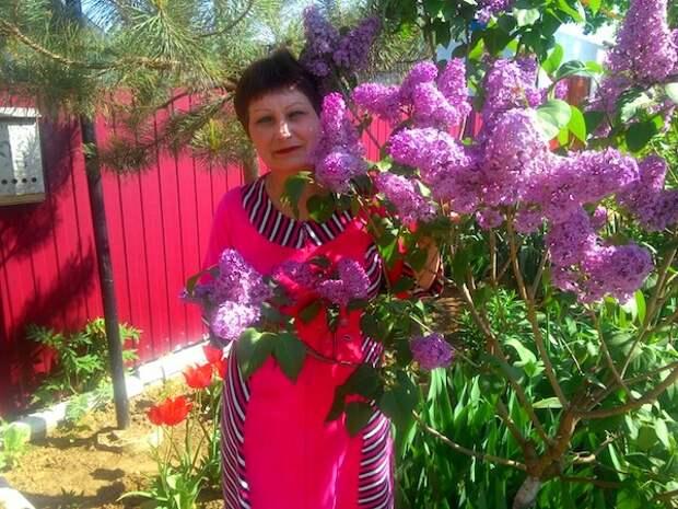 Не представляю свой дом без цветущей в мае сирени