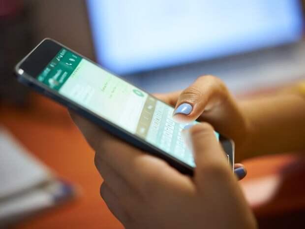 Хинштейн оценил возможность ограничения работы WhatsApp в России