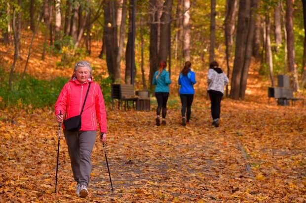 Более 80 процентов респондентов любят гулять в парке «Кузьминки» в начале сентября – итоги опроса