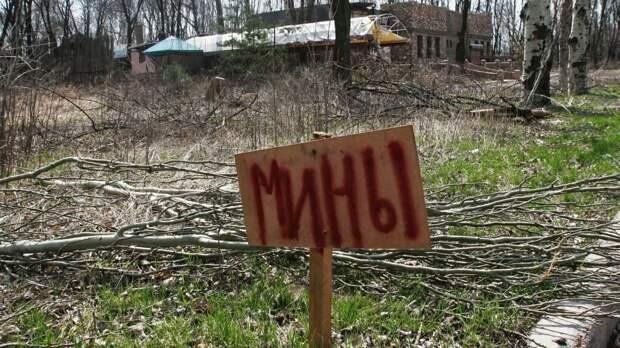 Украинские силовики минируют жилые районы Донбасса - Басурин