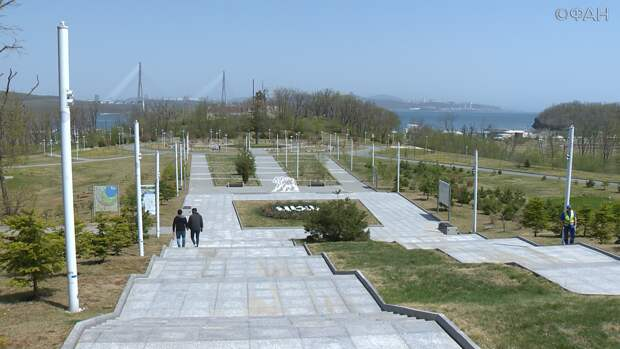 Тысячу пихт высадили во Владивостоке в память о погибших в Великой Отечественной