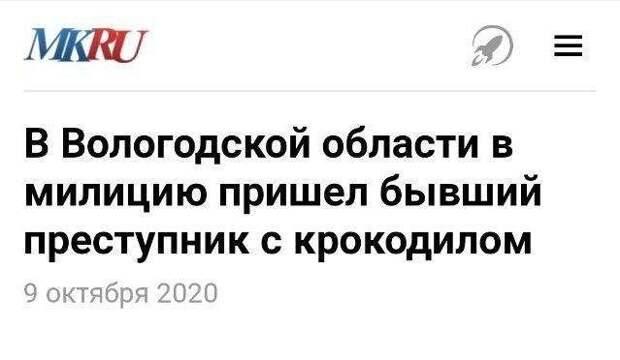 Перлы российских СМИ