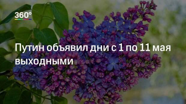Путин объявил дни с 1 по 11 мая выходными
