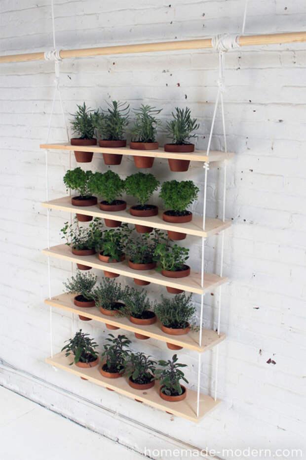 С помощью вертикального озеленения можно добиться визуальное расширения пространства.